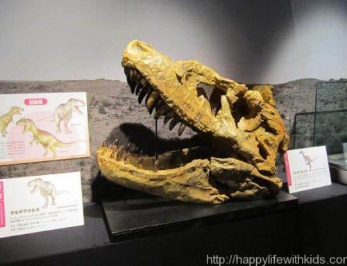 子供との夏休み:玉川高島屋 恐竜大図鑑展