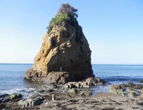 三浦半島で子供と魚釣り:立石海岸