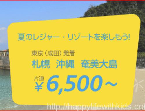 夏休み5日間の旅行プラン 検討その①バニラ