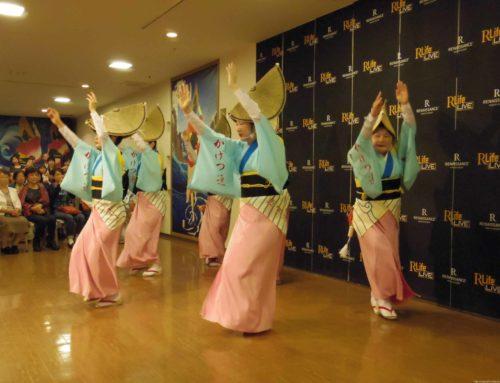 子連れ徳島一泊旅行 ⑦ルネッサンスリゾートナルトで阿波踊りを堪能。