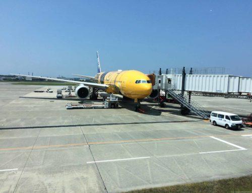 猛暑の松山子連れ1泊2日旅行:スターウォーズジェットで羽田へ